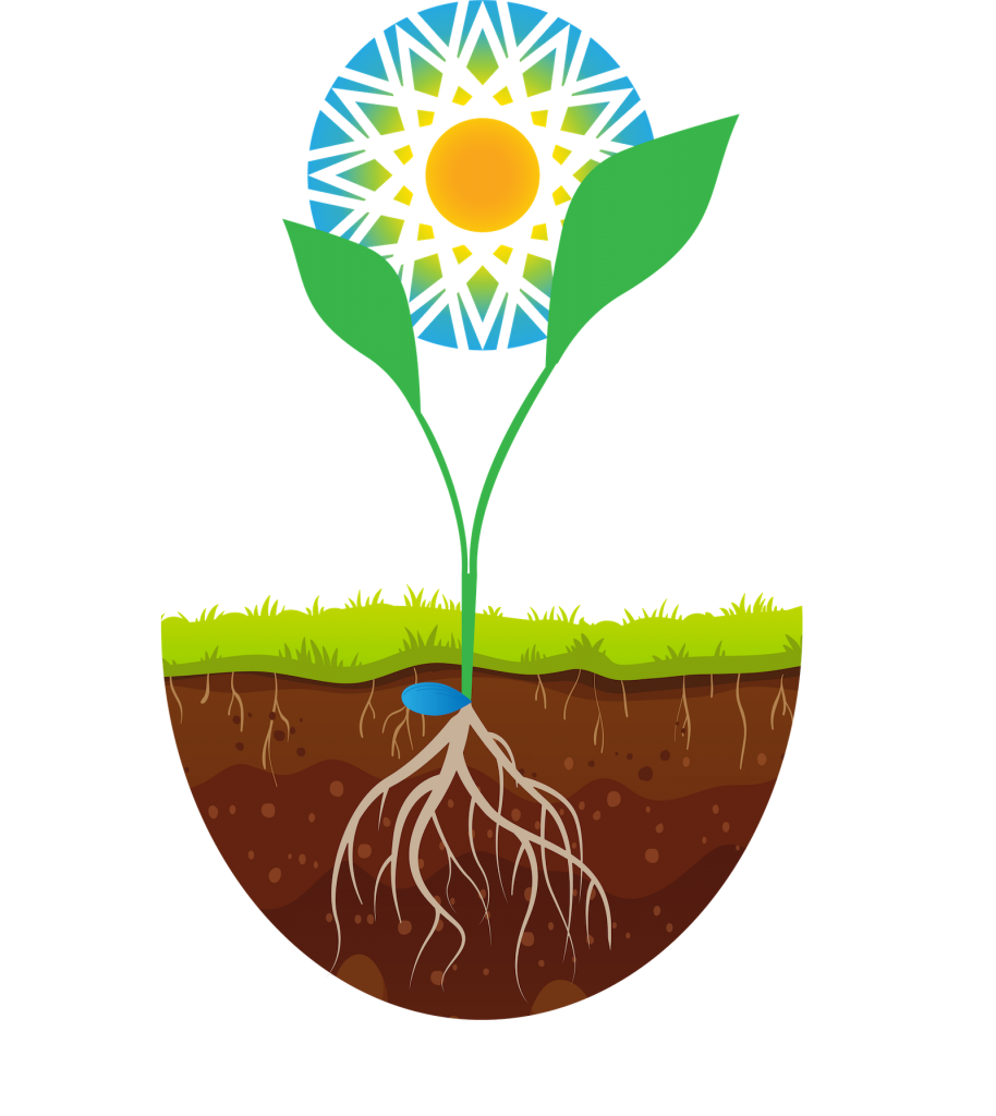 wch logo and a plant